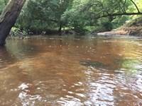 Cabin & Pastliga Creek : Butler : Taylor County : Georgia