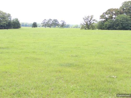 Mini Farm Or Dream Home Site : Benton : Yazoo County : Mississippi