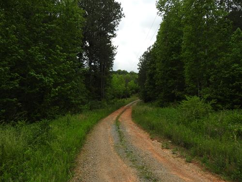 99 Acres Pickens County - 9684 : Talking Rock : Pickens County : Georgia