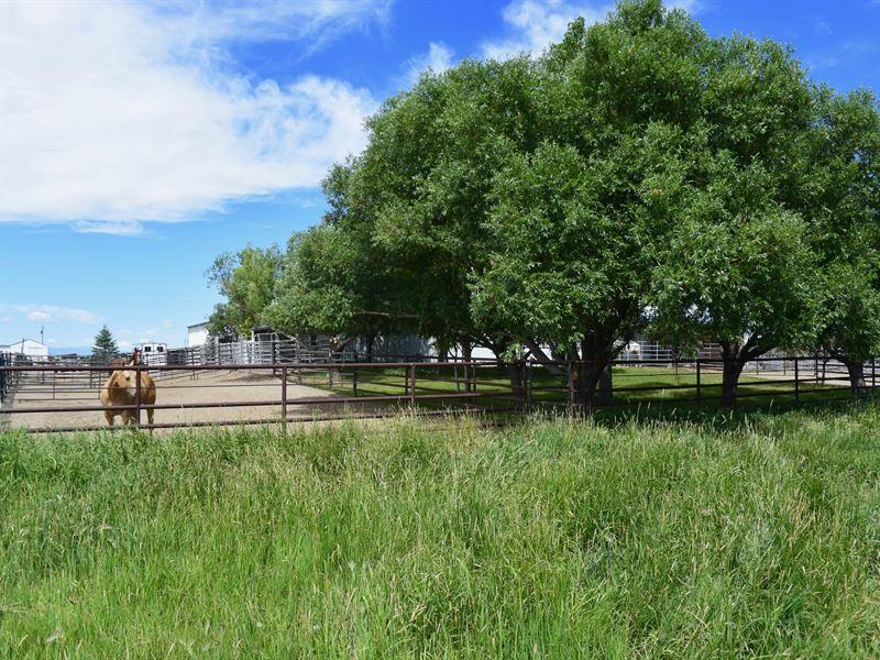 Fremont Sheep Ranch : Riverton : Fremont County : Wyoming