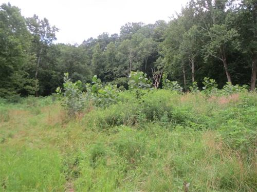 35 Acres Martinsville Indiana : Martinsville : Morgan County : Indiana