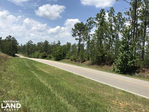 The May Tower Road Longleaf Tract : Bay Minette : Baldwin County : Alabama
