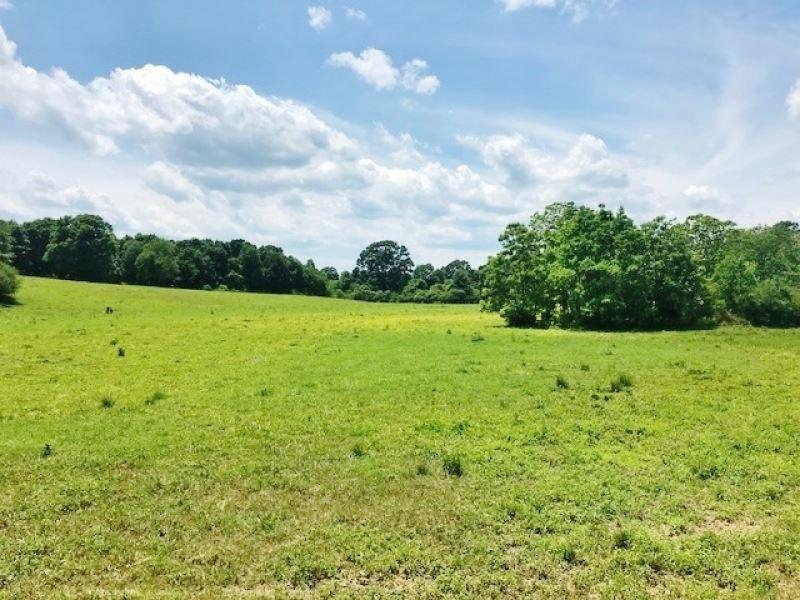58 Acres Pasture Land For Sale Walt : Salem : Walthall County : Mississippi