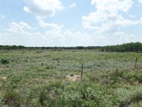 311 Acres Offered In 2 Tracts : Carmen : Woods County : Oklahoma