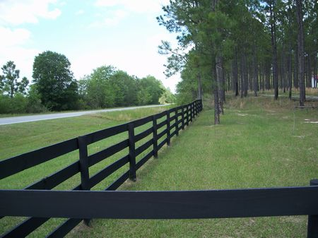 62.75 Acre Plantation Caliber Showp : Sylvester : Worth County : Georgia