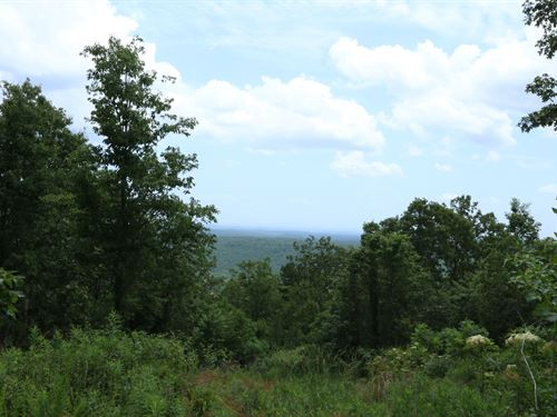 Big Sky Views - Private Mtn Retreat : Ashville : Saint Clair County : Alabama