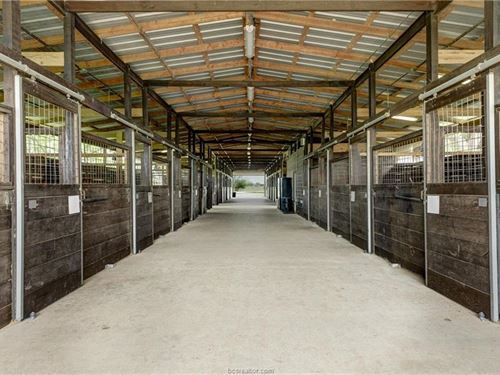 30+ Acre Beautiful Horse Farm : Bryan : Brazos County : Texas