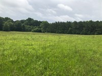 Enterprise Homesite & Timber Invest : Brookhaven : Lincoln County : Mississippi