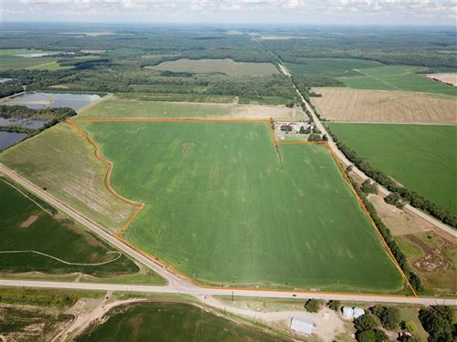 Rice Farm For Sale at The Intersec : Brinkley : Monroe County : Arkansas