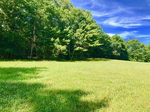 80 Acres Land, Hardwoods And Meadow : Benton : Columbia County : Pennsylvania
