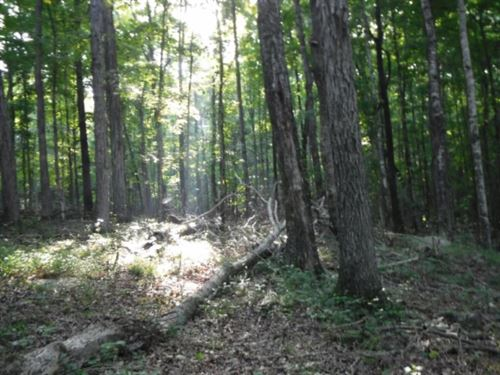 6.71 Ac Totally Wooded, Level To A : Cookeville : Putnam County : Tennessee