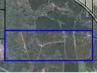 Timberland With Road Frontage : Hartford : Geneva County : Alabama