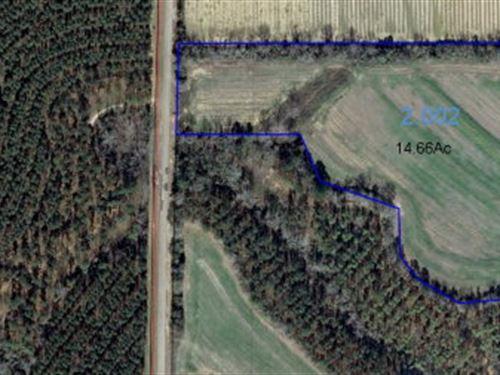 Nice Open Property : Columbia : Houston County : Alabama