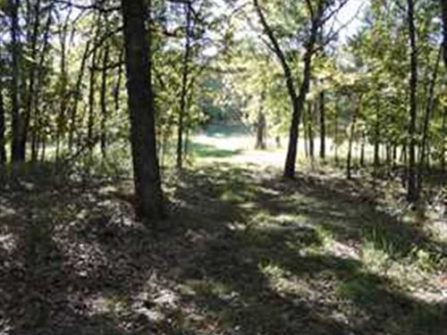 72 Acres Some of The Best Hunting : Roach : Camden County : Missouri