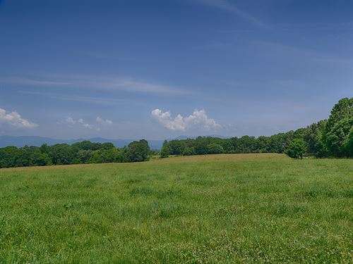 Nice Cattle Farm In Nelson : Arrington : Nelson County : Virginia