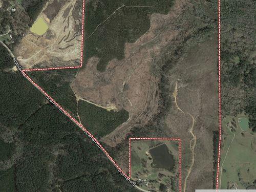 Gum Pond Branch : Decatur : Newton County : Mississippi