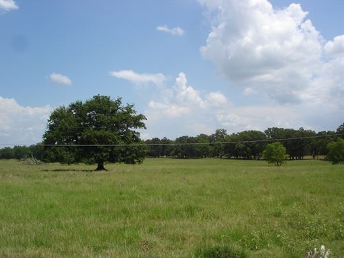 Potential Home Site On Large Acres : Blossom : Lamar County : Texas