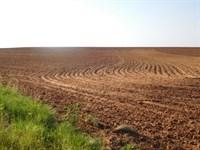 Caddo County Land 156 Acres +/- : Hydro : Caddo County : Oklahoma