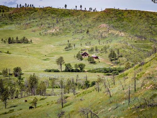 Tongue River Ranch : Miles City : Powder River County : Montana