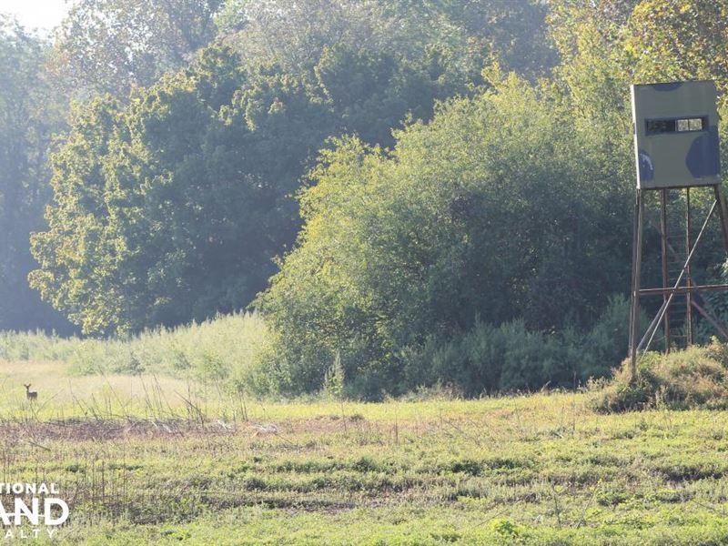 Solitude Point, MS River Hunting : Port Allen : West Baton Rouge Parish : Louisiana