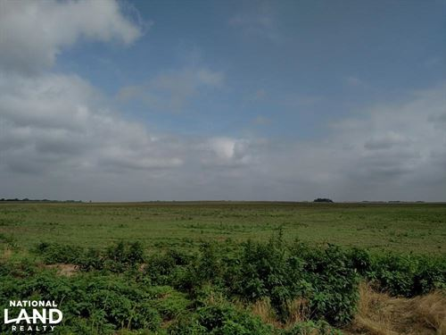 Peace Road Dryland Tract 3 : Sterling : Reno County : Kansas