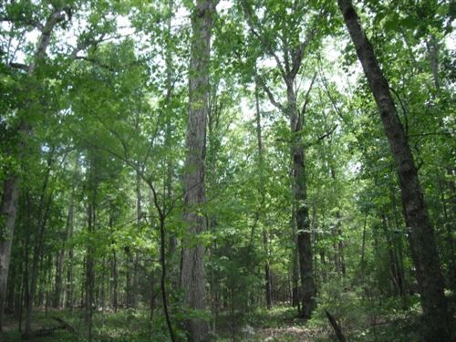 5.07 Acres - Richland County, Sc : Blythewood : Richland County : South Carolina