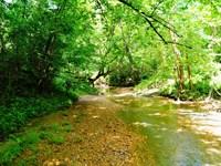 Locust Creek Farm : Yazoo City : Yazoo County : Mississippi