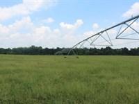 Crawley Farm : Unadilla : Dooly County : Georgia