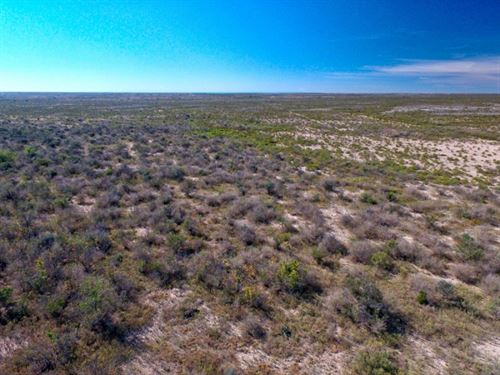 379 Acre Hunting Ranch : Dryden : Terrell County : Texas