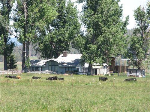 Green Ranch : Bonanza : Klamath County : Oregon
