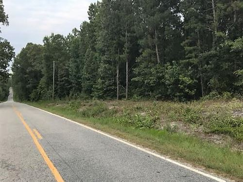 Private Country Tract With Timber : Patrick : Chesterfield County : South Carolina