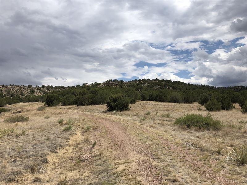 Old Saddle Ranch : Pueblo : Pueblo County : Colorado
