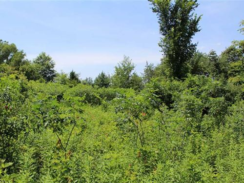 18.5 Acres Located Near Knox, IN 4 : Knox : Starke County : Indiana