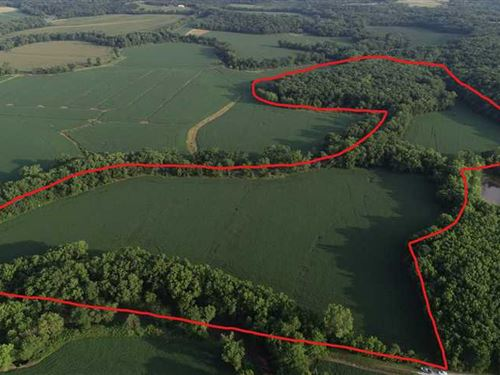 Hunting Acreage With Tillable : Smithville : Platte County : Missouri