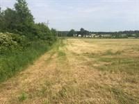 Beautiful, Scenic Farmland For Sale : New Gloucester : Cumberland County : Maine