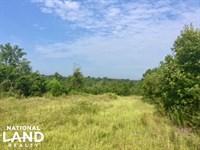 Muckalee Creek Hunting Camp : Buena Vista : Marion County : Georgia