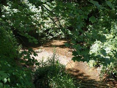 Mini Farm, 25.11 Acres, Stream : Galax : Grayson County : Virginia