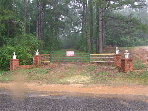 Perry County Timber Tract : Marion : Perry County : Alabama