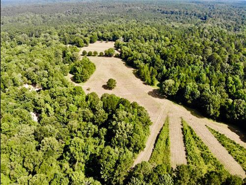 Gorgeous 70 Acres In With Camp : Roxie : Franklin County : Mississippi