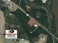 10 Acres of Commercial Land For Sa : Fairfax : Allendale County : South Carolina