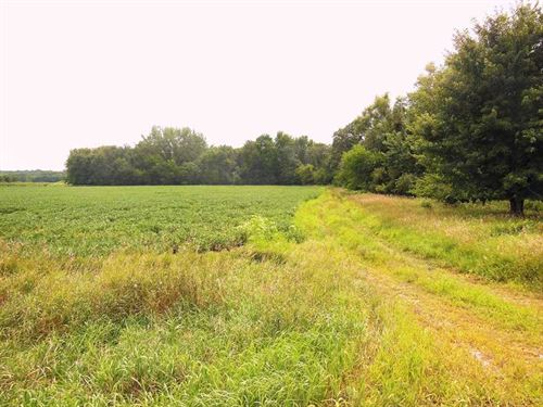139 Ac, M/L, Land For Sale in Fran : Alden : Franklin County : Iowa