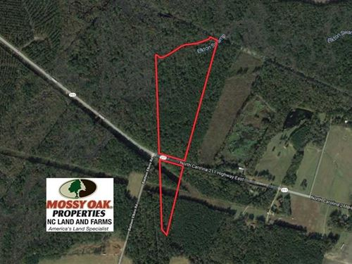50 Acres of Mature Timber Land For : Clarkton : Bladen County : North Carolina
