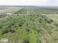 Labelle Sears Road Farmland Tract : Labelle : Hendry County : Florida