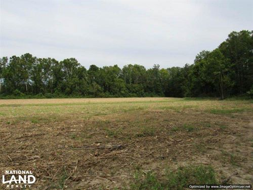 Ag & Timber Land : Kilmichael : Montgomery County : Mississippi