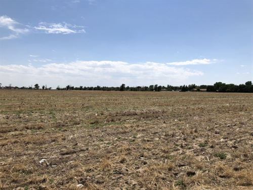 Monahan Development Acreage : Sterling : Logan County : Colorado