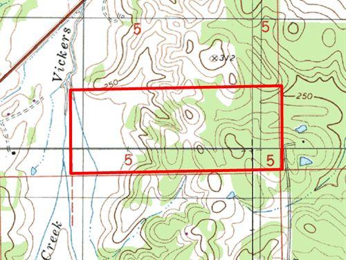 Davis Spur Road, Pasture & Hunting : Pintlala : Montgomery County : Alabama