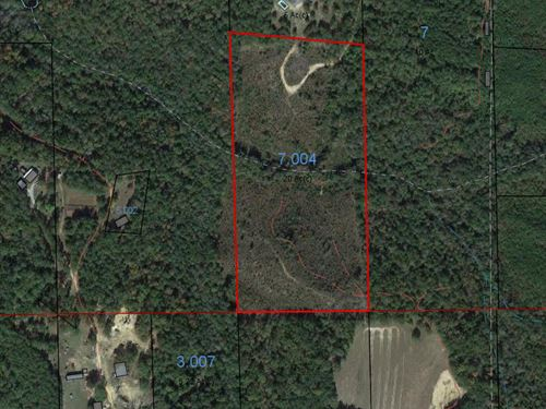 Maplesville 20 Acre Tract : Maplesville : Chilton County : Alabama