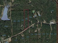Lot 14 Grass Farm Road : Wetumpka : Elmore County : Alabama