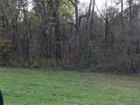 360 Acres Catoma Creek Property : Montgomery : Montgomery County : Alabama