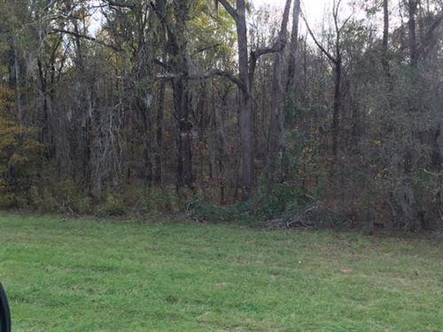 360 Acres Catoma Creek Property : Montgomery : Alabama